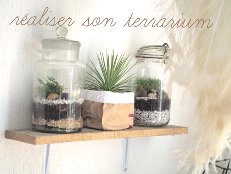 d co diy terrarium le blog mode de st phanie zwicky. Black Bedroom Furniture Sets. Home Design Ideas