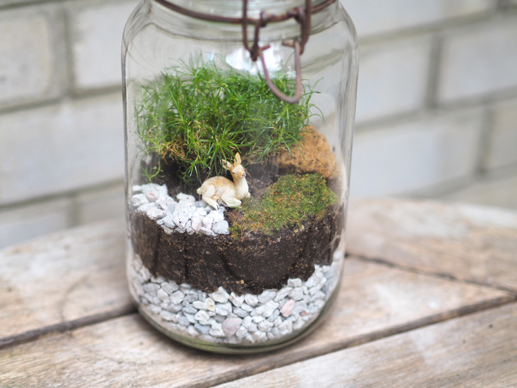 Deco Diy Terrarium Le Blog Mode De Stephanie Zwicky