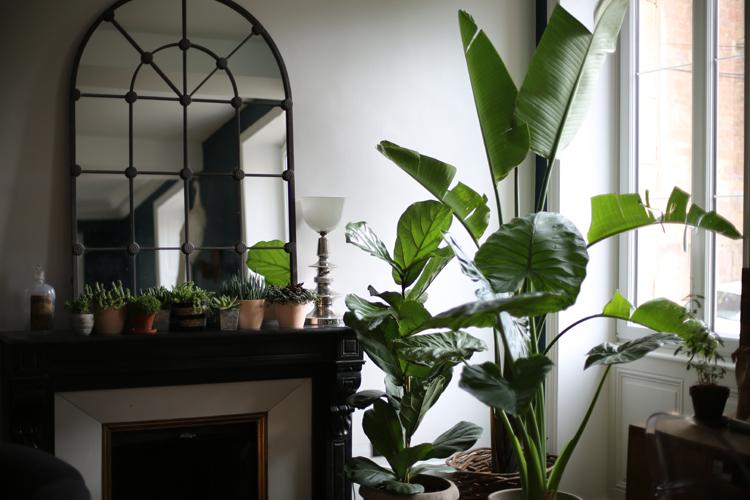 une jungle chez soi le blog mode de st phanie zwicky. Black Bedroom Furniture Sets. Home Design Ideas