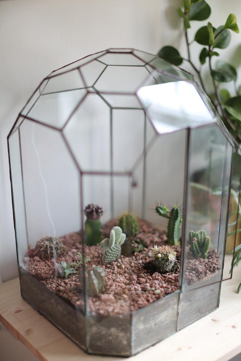 Comment Faire Un Terrarium Plante Grasse rÉaliser un terrarium de cactus – le blog mode de stéphanie